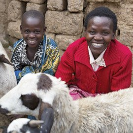 Building secure livelihoods by providing families with access to finance and training