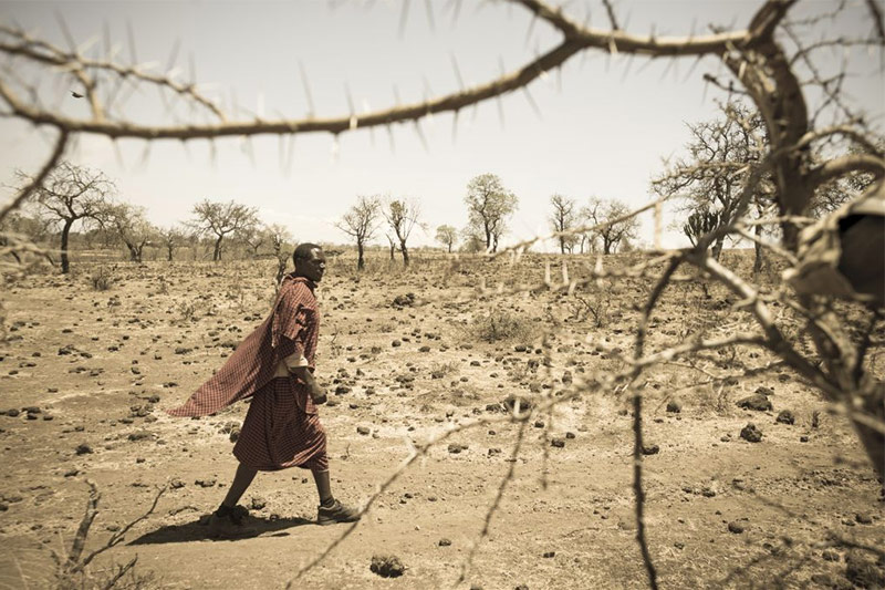 A man walks through a dusty brown landscape