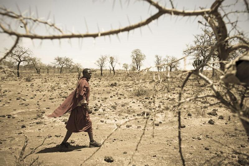 A man walks through a dusty brown landscape