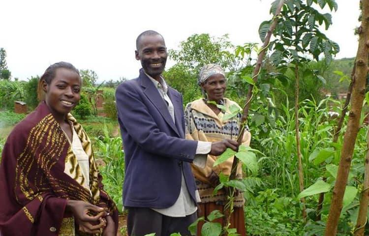 Land restoration with Farmer Managed Natural Regeneration Building