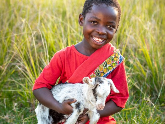 Goats have helped Debby's family in southern Zambia earn a good income and turn their lives around.