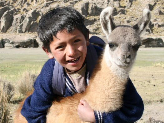 This furry friend can help carry heavy loads and is a source of wool and nutritious milk for Alberto and his family in Bolivia.