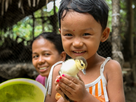 Five-year-old Mi Mi, from Myanmar, likes to hold her family's ducklings.