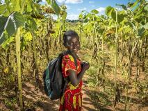 Ivy walks through her family's maize field in southern Zambia.