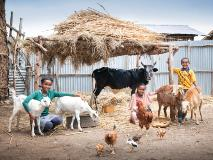Children surrounded by their farmyard animals, helping to produce food and a livelihood for their family.