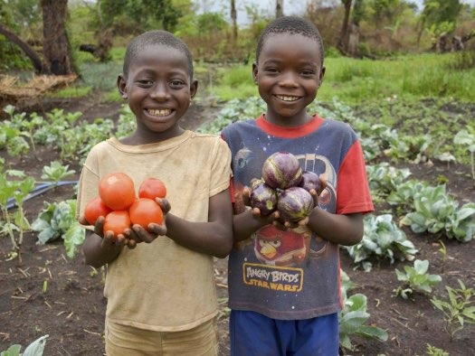 Improved farming and nutrition for 192 people