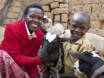 Provided animals by World Vision, Cyprien and his family have broken the cycle of poverty. They now have access to milk to help with nutrition and manure to fertilise crops.