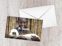 In Burundi, Frediane, aged 11, holds his family's little lamb.